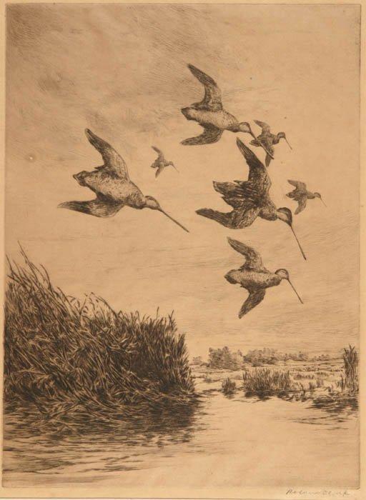 22: Clark, Ronald (Am. 1874-1957). English Snipe.