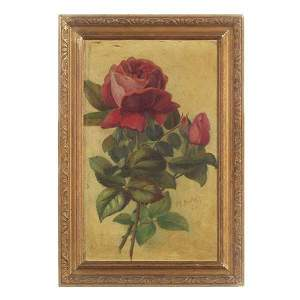 1650: American, Red Rose Study, 1911