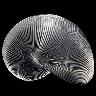 Baccarat Nautilus Shell