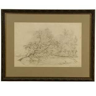 DUTCH ART DRAWING KOEKKOEK 19TH C. TREE