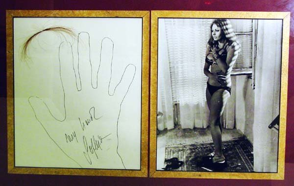 23: Sophia Loren Signature Hand Drawing Pic