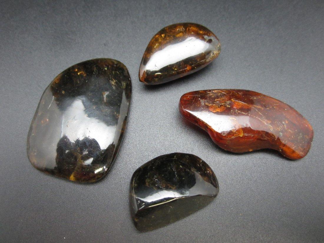 group of Polished Ambers
