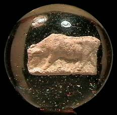 """BB Marbles: Cow Sulphide 1-11/16"""" 8.8"""