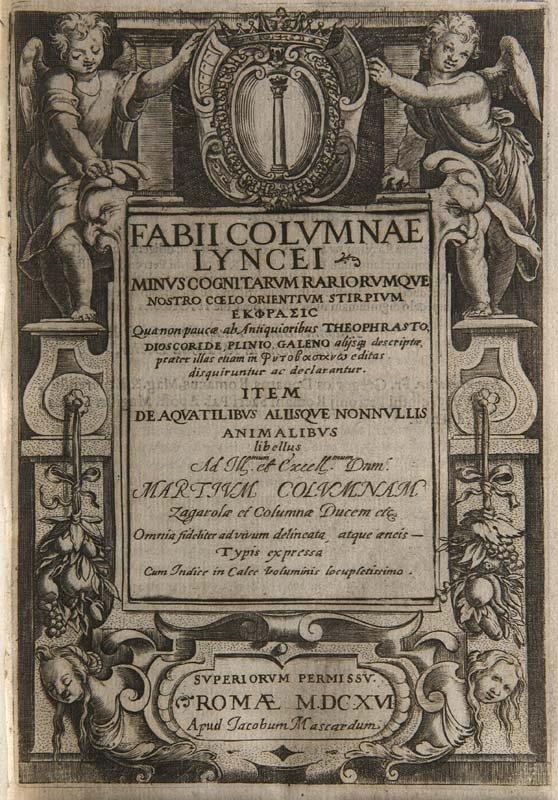 Colonna, Fabio Fabii Columnae Lyncei Minus cognitarum