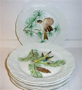 6 French Porcelain Bird Plates