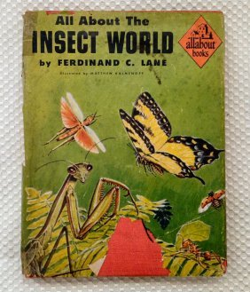 ALL ABOUT THE INSECT WORLD - Lane