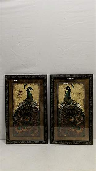Pair of Peacock prints in frame & glass