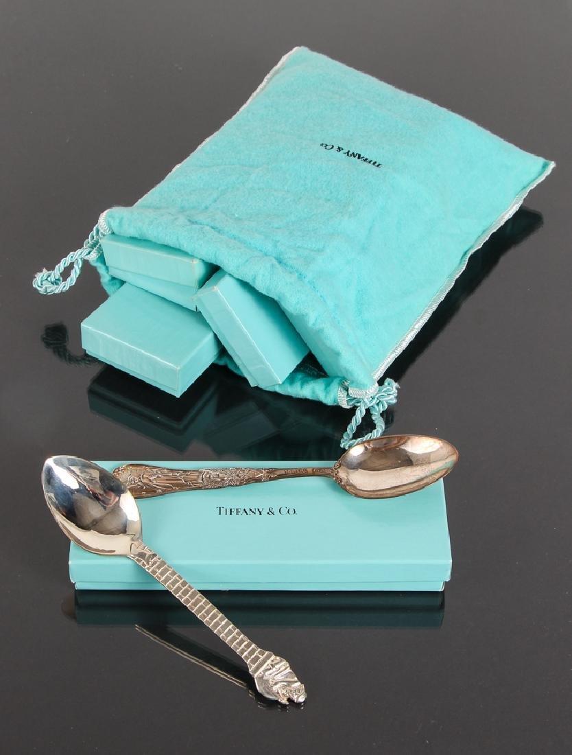 Seven Tiffany Sterling Souvenir Spoons - 10