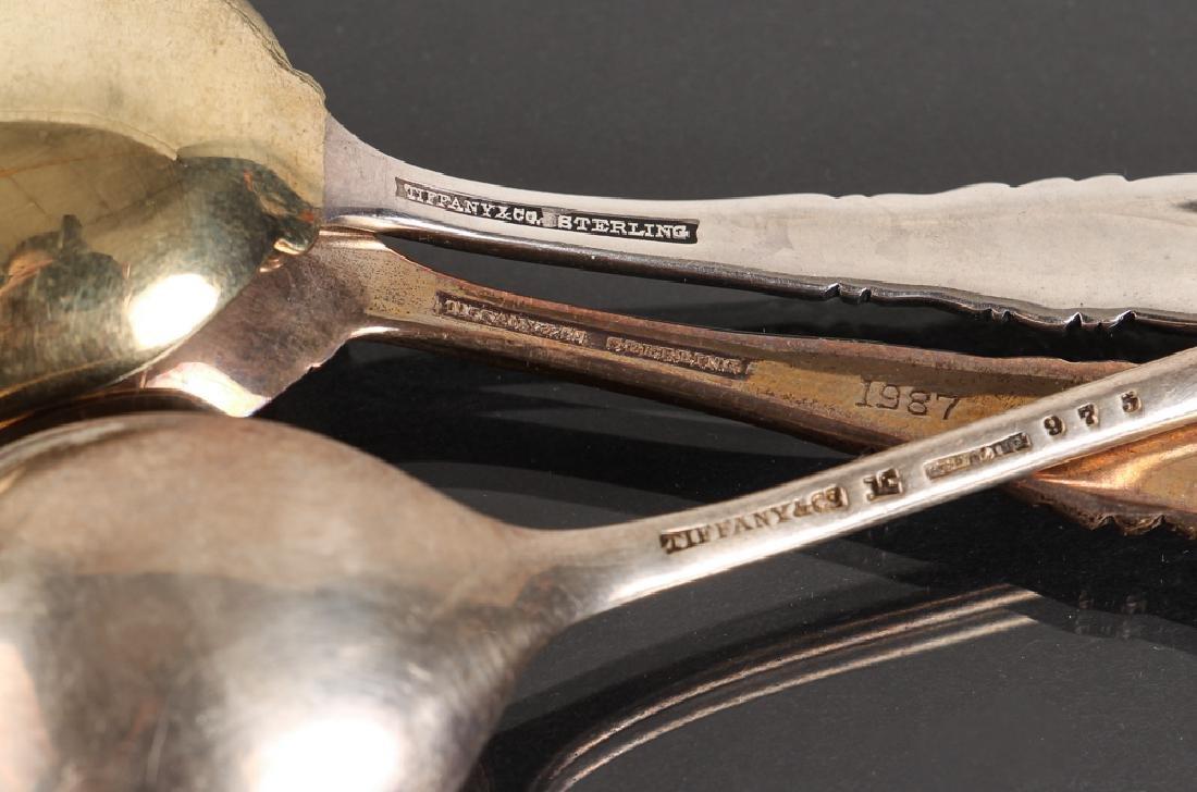 Seven Tiffany Sterling Souvenir Spoons - 9