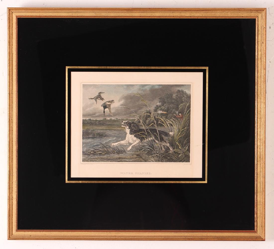 2 Hunting Dog engravings after Reinagle Stag Hound & - 2