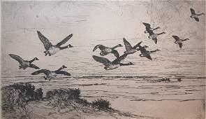 20 Frank W Benson Wild Geese original Etching