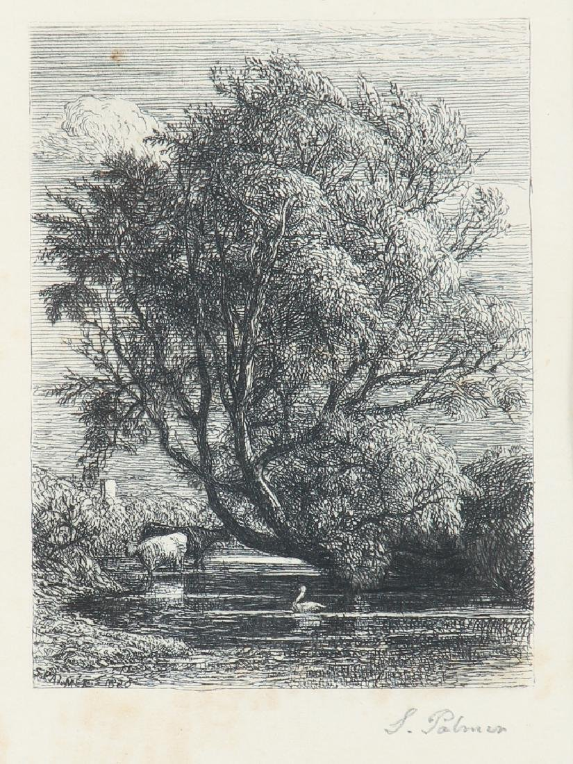 Samuel Palmer The Willow Etching