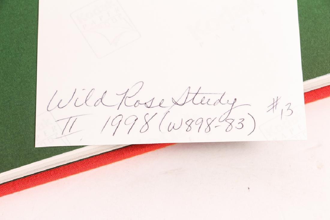 Gary Bukovnik watercolor; Wild Rose Study II - 8