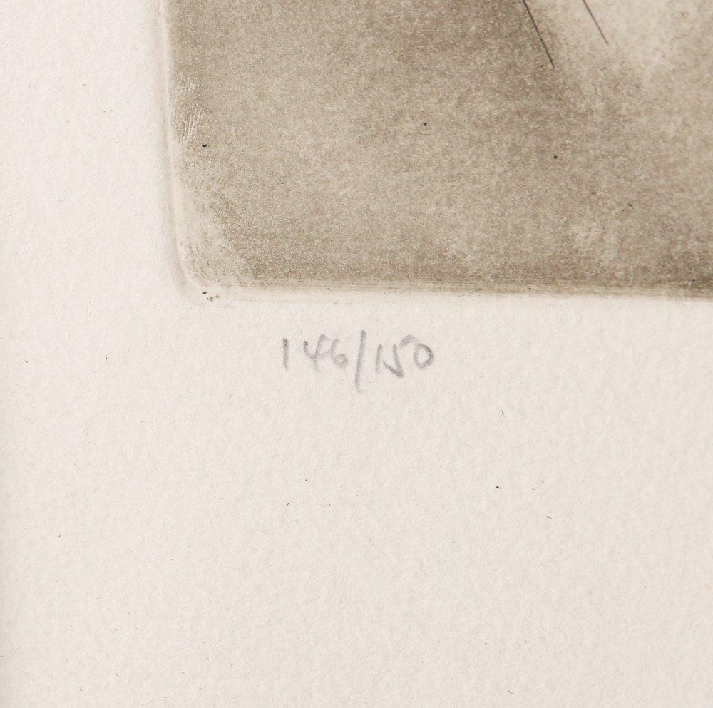 AL HIRSCHFELD Barbra Streisand 1975 etching - 4