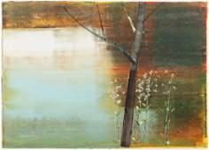 Stephen Pentak 2006 abstracted landscape on paper