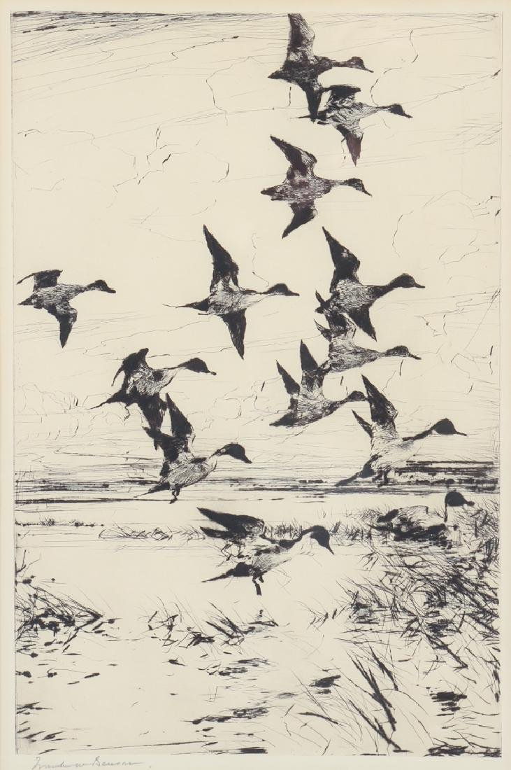 Frank Weston Benson 1930 dry point etching Pintails