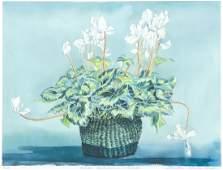 Martha Ball signed litho White Cyclamen - Winter