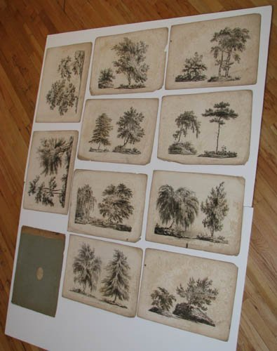 14: J. Laport engraving set Characters Of Trees