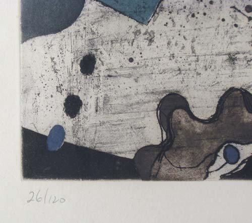 72: Tetsuo Araki Untitled color etching - 4
