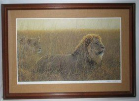 Robert Bateman - Lions In The Grass - Limited Editi