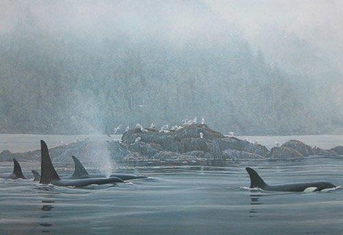 21: Robert Bateman signed Orca Procession
