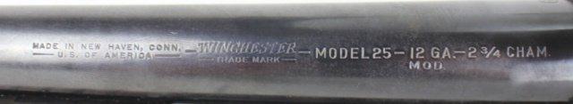 WINCHESTER MODEL 25 12 GAUGE SHOTGUN - 3