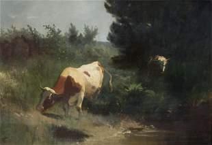Koller, Rudolf