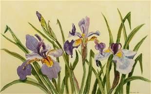 "Nancy Marstaller (Am. 20th Century), ""Irises"" 1984"