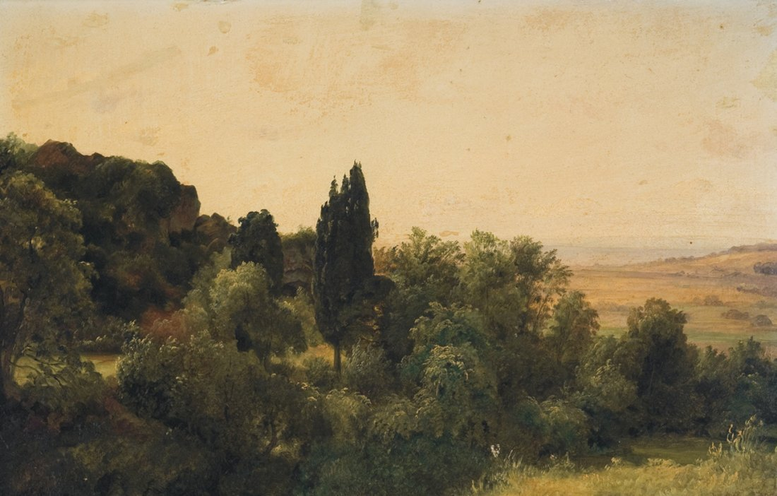 Woods and Distant Fields