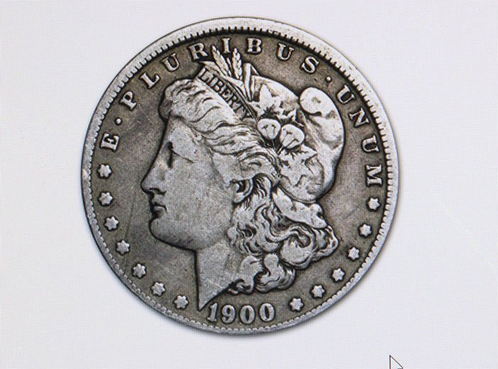 1878-1904 Morgan Silver Dollar - (VG - VF)
