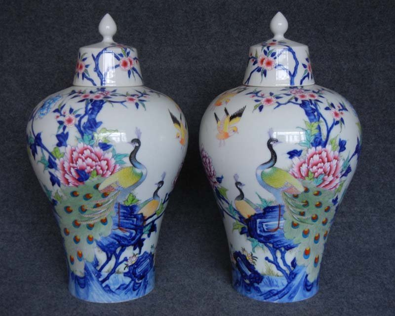 Pair Antique Chinese Qing Enamelled  Peacock Porcelain