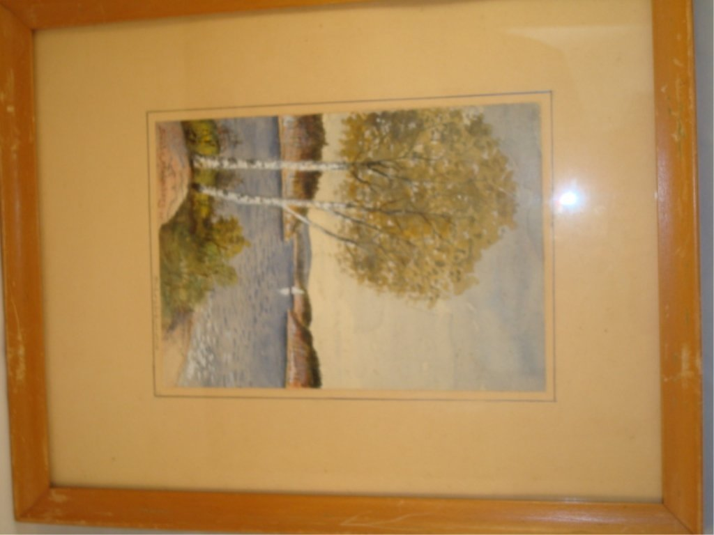 Sibbe Malmberg Water Color Birch Trees
