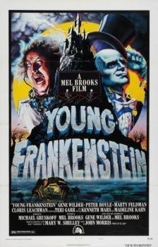 Original Young Frankenstein One Sheet movie poster!!