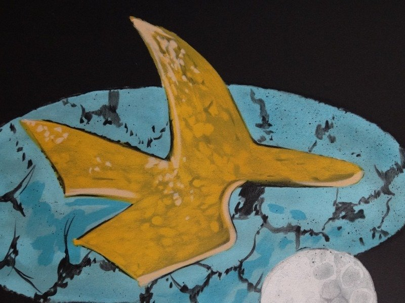 """BRAQUE Georges : Signed lithograph """"The bird and the mo"""