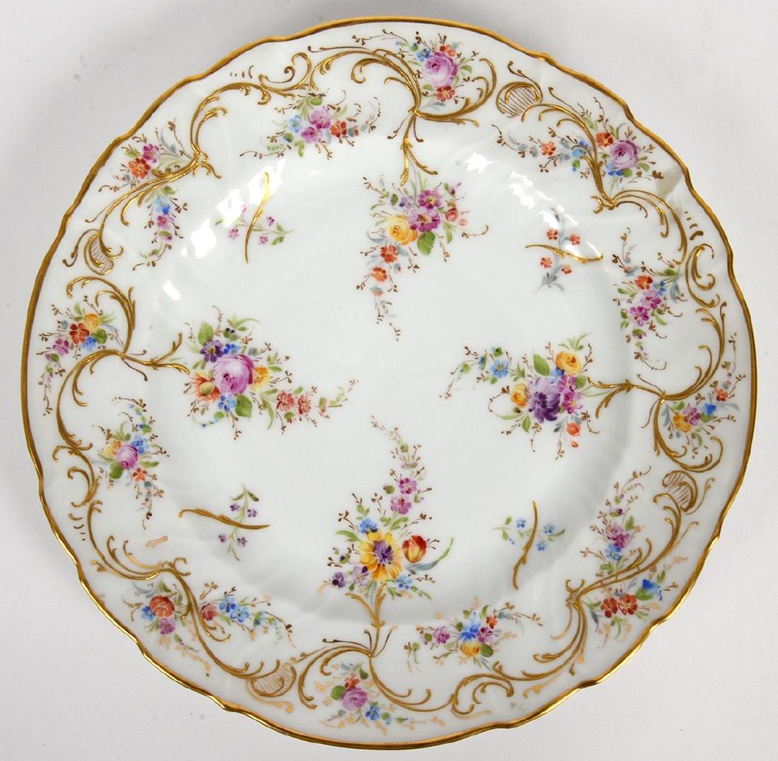 TEN VARIOUS DRESDEN PORCELAIN DINNER PLATES - 5