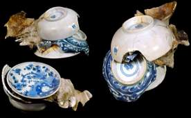 288 An Accretion of Chinese BlueWhite Porcelain
