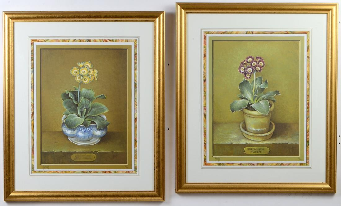 NINE OFFSET LITHOGRAPHS OF POTTED FLOWERS - 10