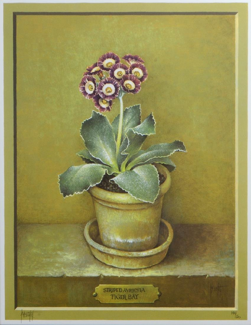 NINE OFFSET LITHOGRAPHS OF POTTED FLOWERS - 11