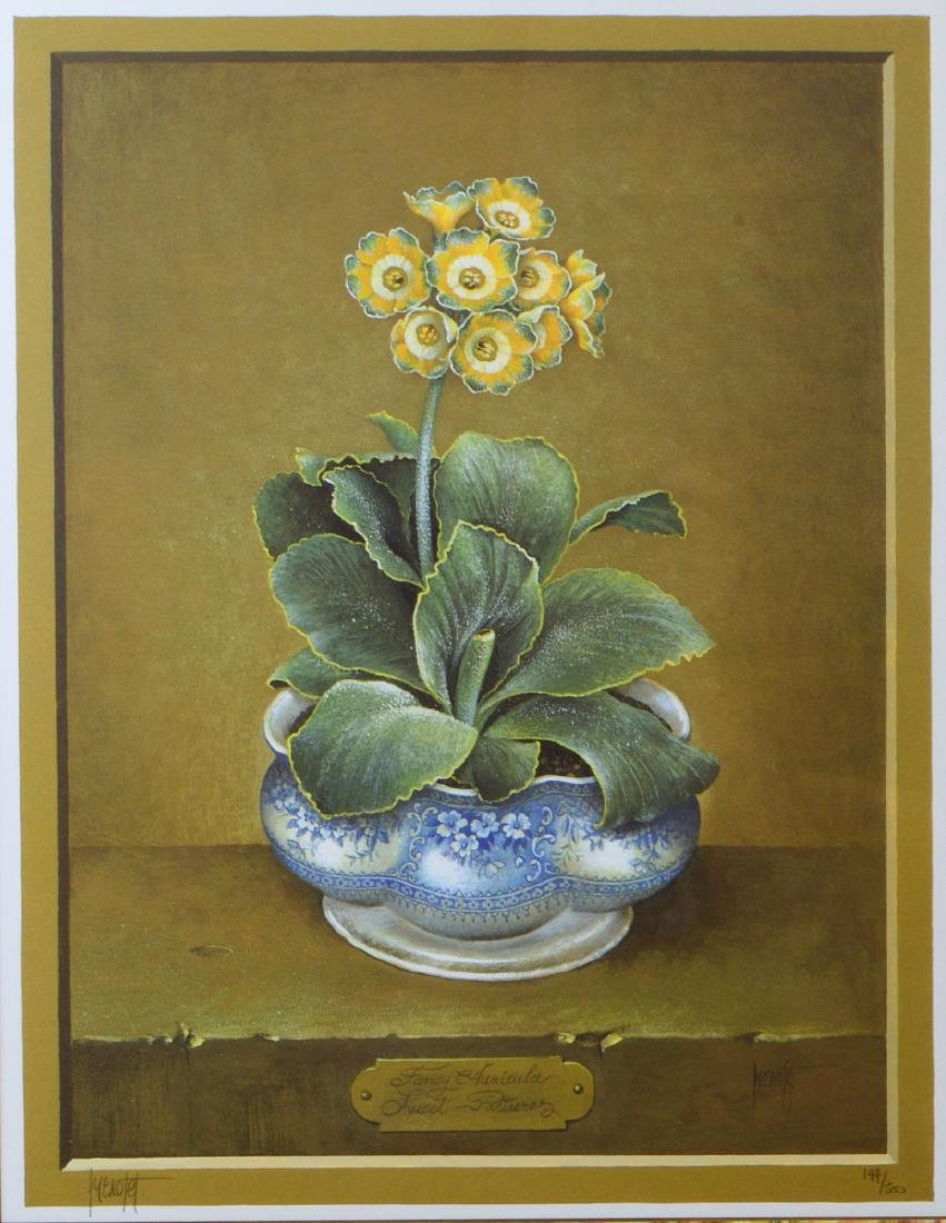 NINE OFFSET LITHOGRAPHS OF POTTED FLOWERS - 12
