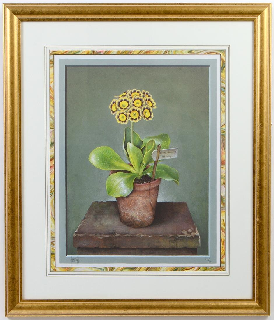 NINE OFFSET LITHOGRAPHS OF POTTED FLOWERS - 13