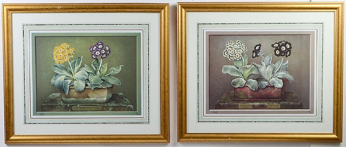 NINE OFFSET LITHOGRAPHS OF POTTED FLOWERS - 15