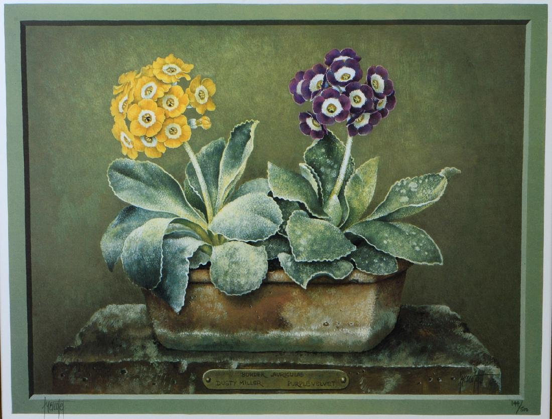 NINE OFFSET LITHOGRAPHS OF POTTED FLOWERS - 17