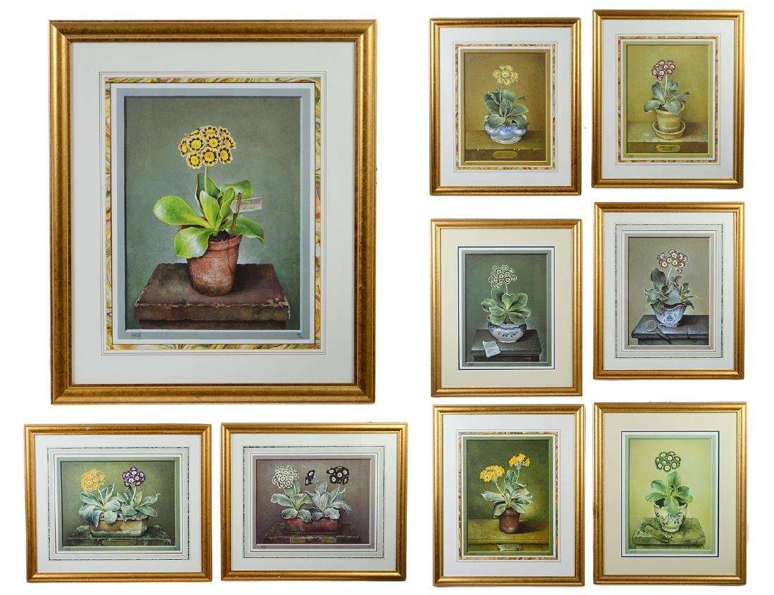 NINE OFFSET LITHOGRAPHS OF POTTED FLOWERS