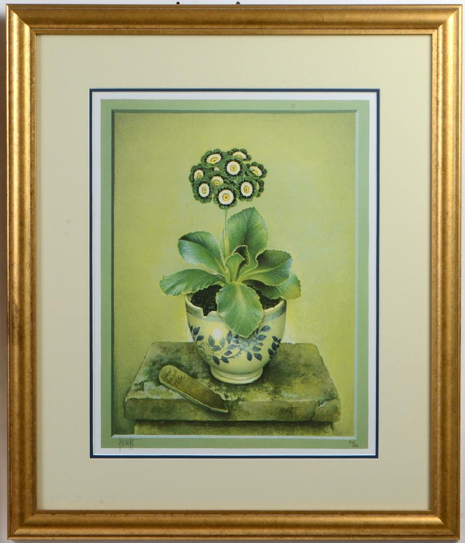 NINE OFFSET LITHOGRAPHS OF POTTED FLOWERS - 3