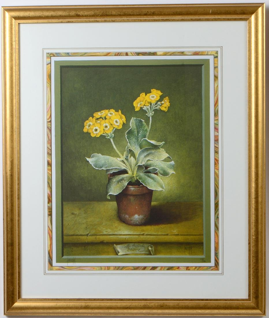 NINE OFFSET LITHOGRAPHS OF POTTED FLOWERS - 4