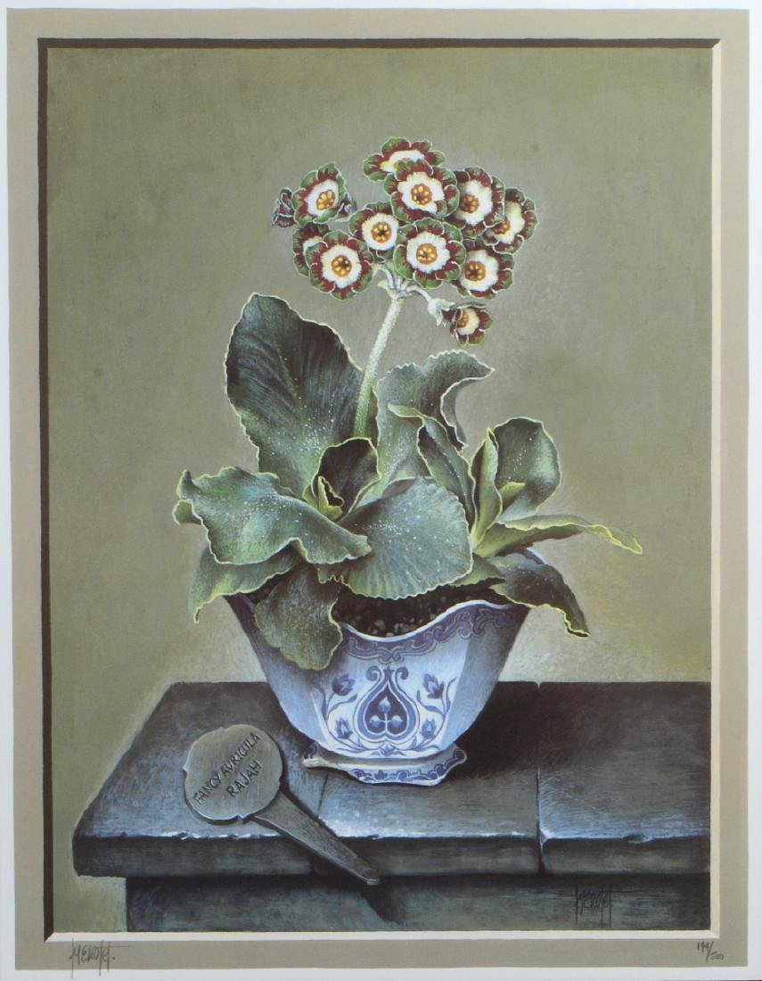 NINE OFFSET LITHOGRAPHS OF POTTED FLOWERS - 8