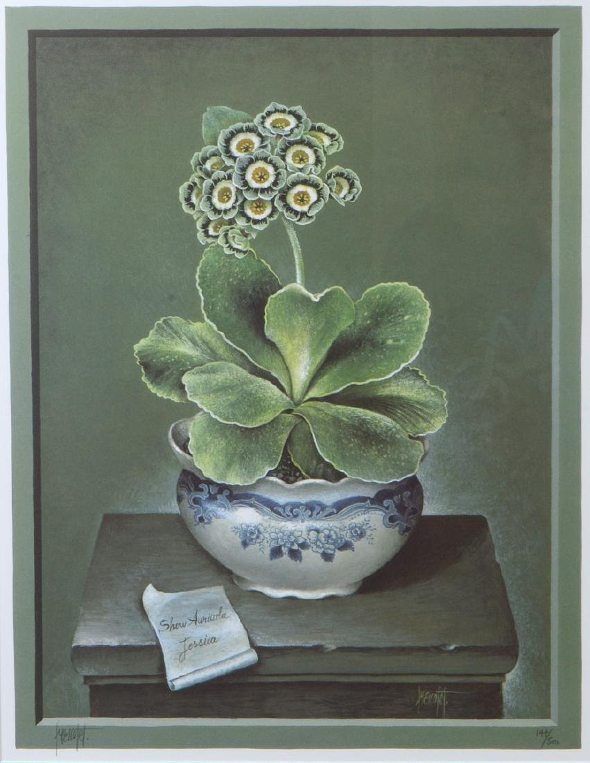 NINE OFFSET LITHOGRAPHS OF POTTED FLOWERS - 9