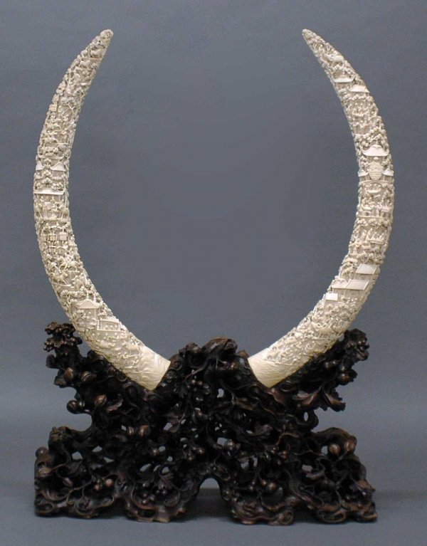 232: OUTSTANDING PAIR OF EXPORT CARVED IVORY TUSKS