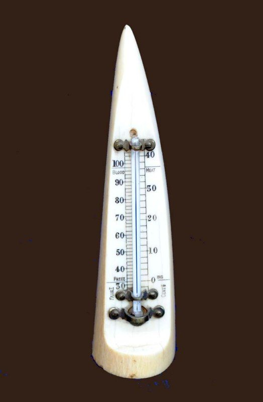 9: CARVED IVORY THERMOMETER