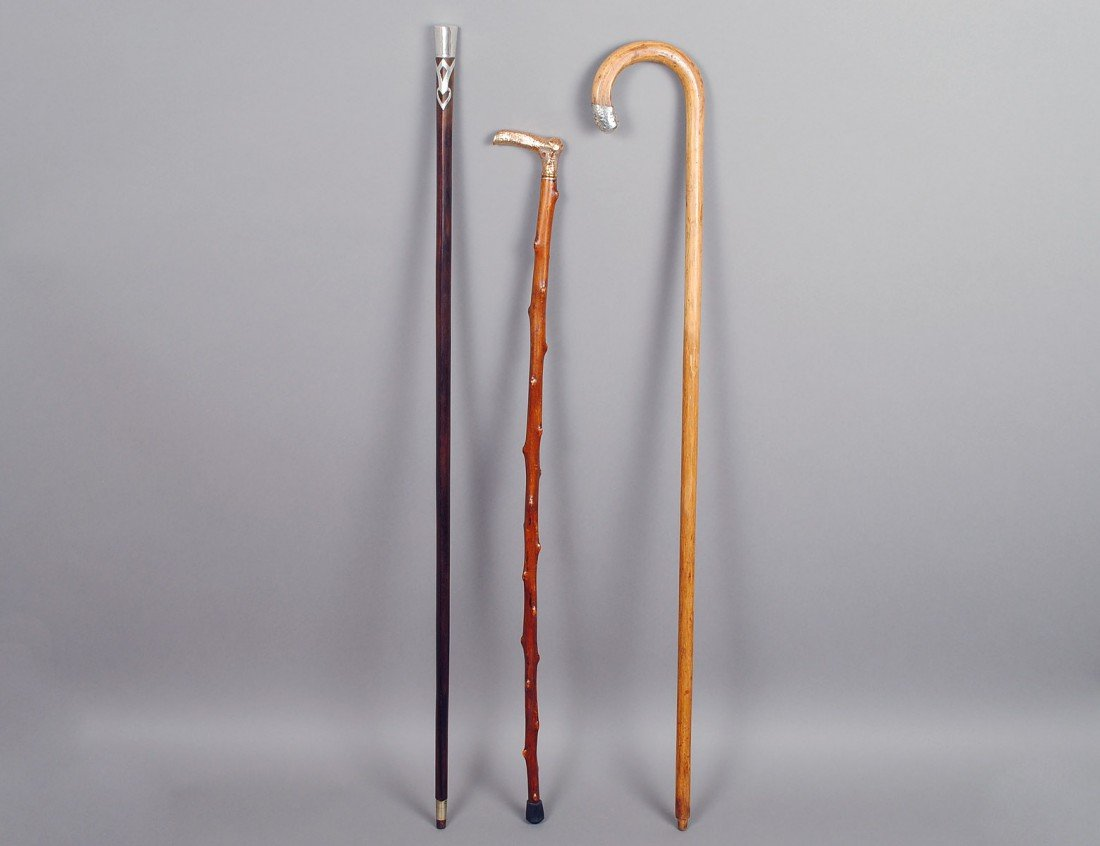 29: GROUP OF THREE ASSORTED WALKING CANES